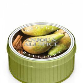 Kringle Candle Anjou & Allspice Świeczka zapachowa 35g
